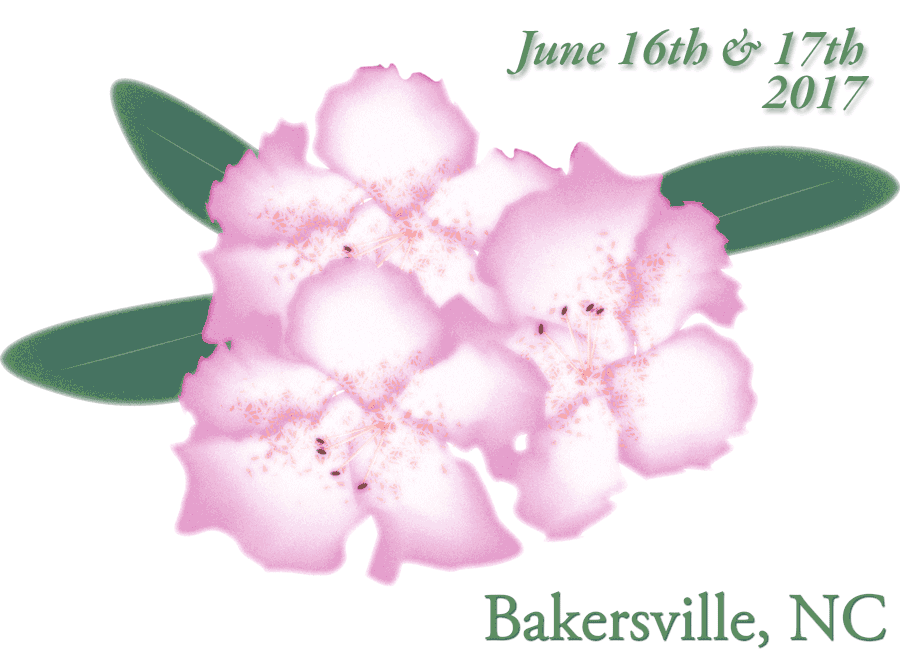 NC Rhododendron Festival